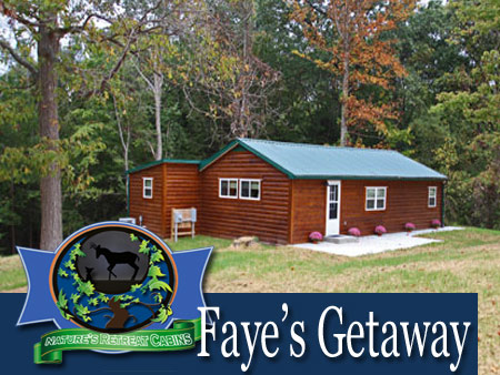 Faye's Getaway - Nature's Retreat Cabins